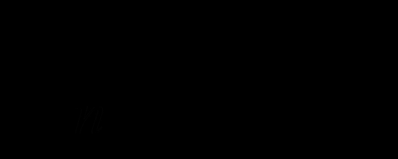 img29